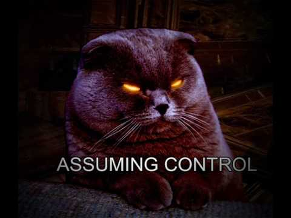 Assuming Control Meme - The Internets